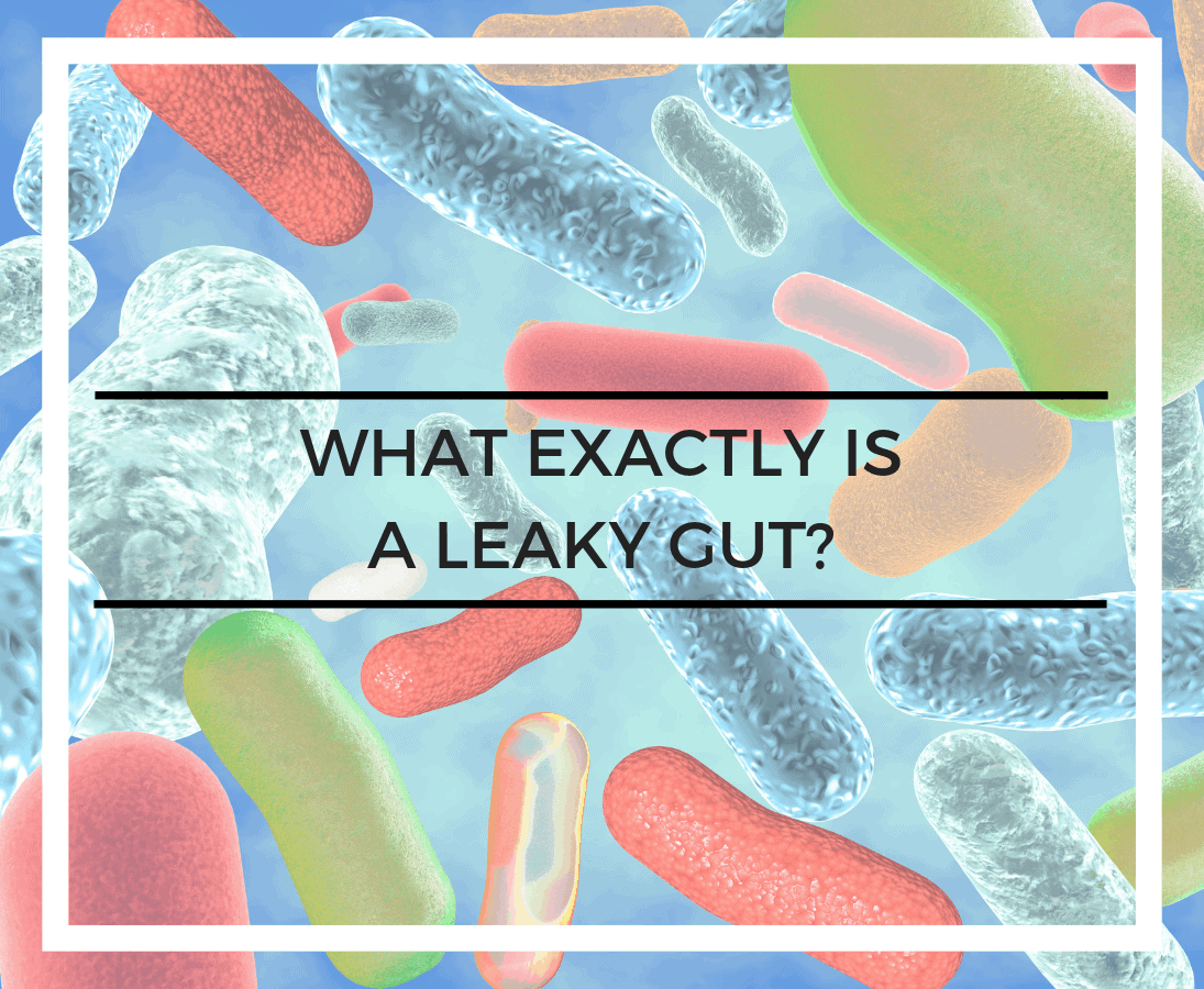 What exactly is a leaky gut